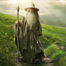 The Hobbit Gandalf Avatar
